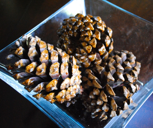Penguin Pine Cone Craft @ Crayon Bx Chronicles