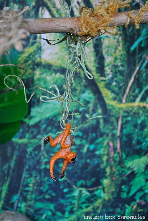 Rainforest Small World by CrayonBox Chronicles
