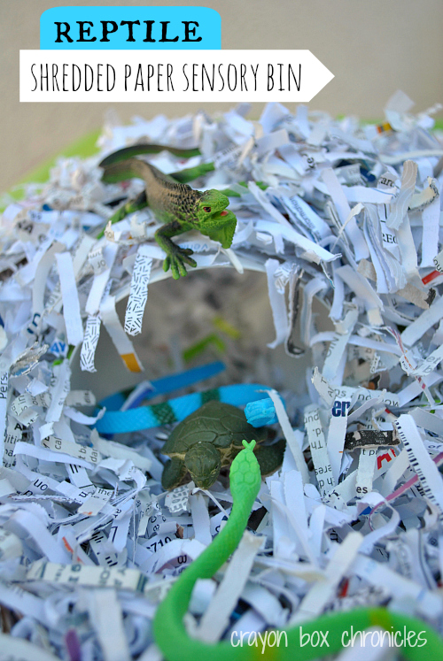 Reptile Shredded Paper Sensory Bin by Crayon Box Chronicles