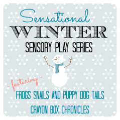 Sensation Winter Sensory Play Series by Crayon Box Chronicles