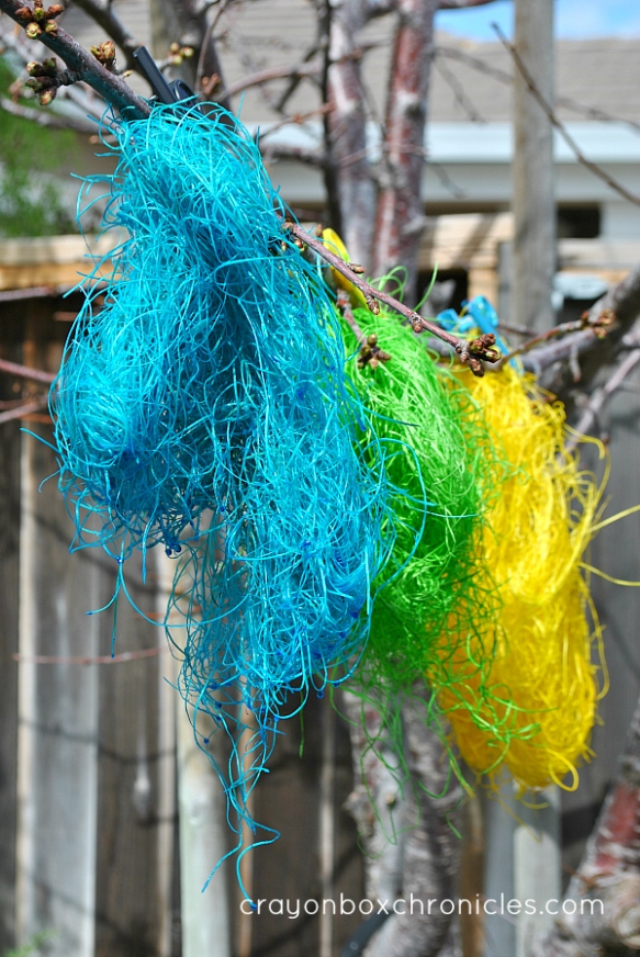 drying colored hay on a tree branch